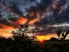Sonnenuntergang05